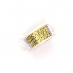 ParaWire 20ga Round Champagne Silver Plated Copper Wire - 5 Metres